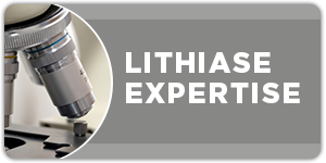 urologie-paris-opera-Expertise-Lithiase