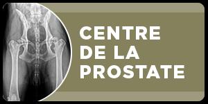 urologie-paris-opera-Expertise-prostate